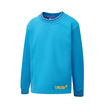 Picture of Tipped Sweatshirt
