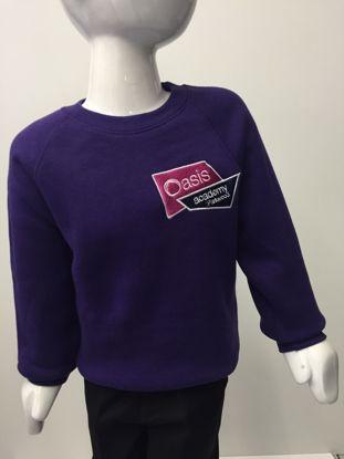 Picture of Oasis Academy Parkwood Sweatshirt