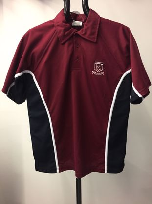 Picture of Winterton Academy Polo Shirt (P.E)