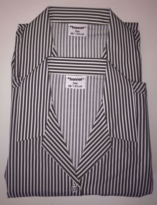 Picture of Caistor Grammar Pin Stripe Blouse