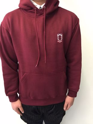 Picture of Winterton Academy Hoody