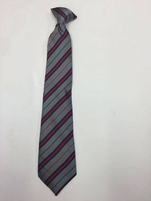 Picture of Frederick Gough Tie